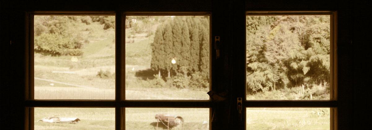 窓から見える景色は日常の慌ただしさを忘れさせてくれます。